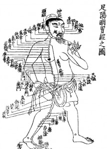 traditional chinese medicine 215x300 1000 Hour Asian Body Therapy Massage Certification